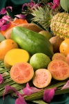 ars_tropical_fruit_no_labels