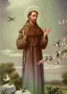 stfrancisofassisi